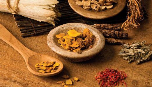 10 Chinese Medicinal Herbs