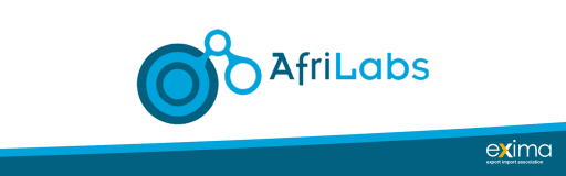 Fintechs That Lend to African...